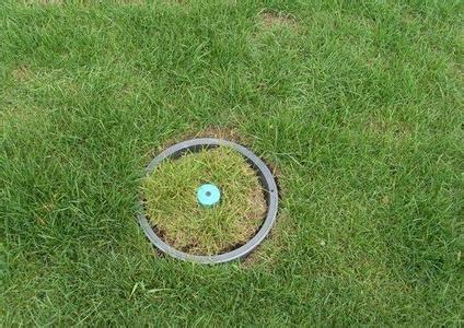 塑料草坪井盖