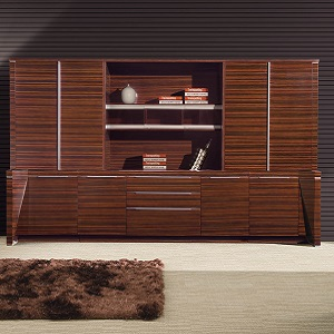 黑檀实木文件柜展示架-BH235I9