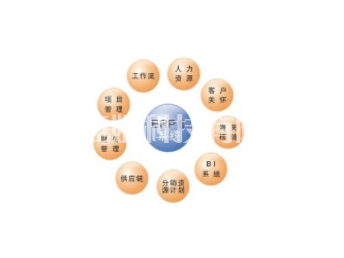 ERP 软件系列