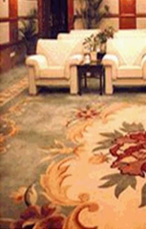武汉纯毛地毯清洗