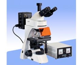 三目荧光显微镜XSP-BM22AY