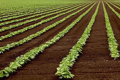 土壤工程物理性质凯发国际网址