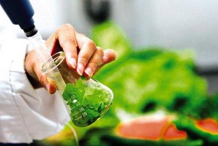 食品常规理化凯发国际网址