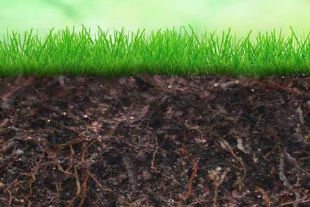 土壤水分特征曲线