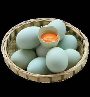土鸡蛋价格