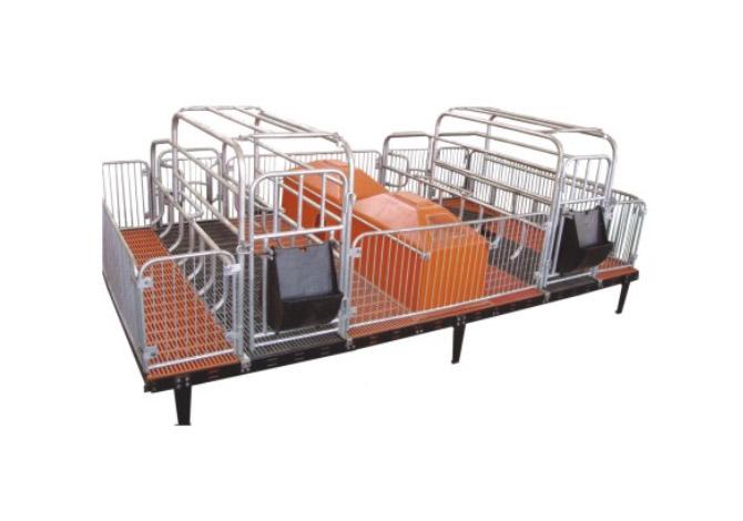 自動化養豬設備