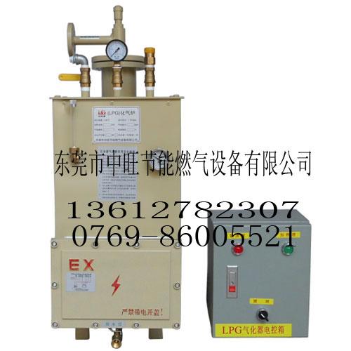 50-200kg落地式气化器
