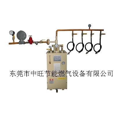 液化气强制气化炉