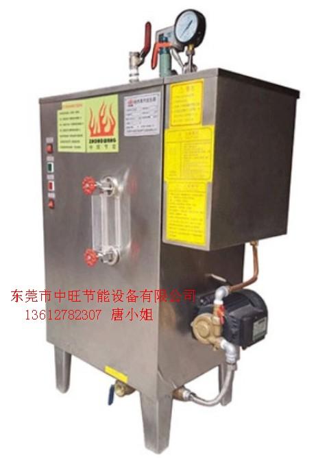 带压力电蒸汽发生器