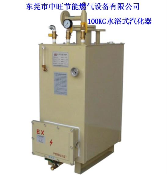 100KG电热式汽化器
