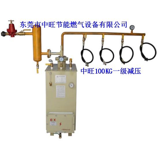 中旺液化石油气化器