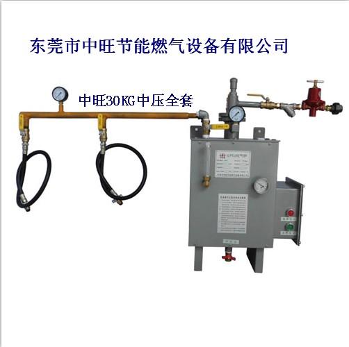 30KG中压气化器