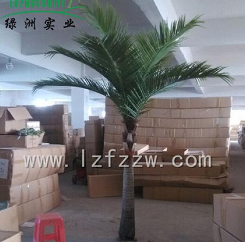 椰子树厂家