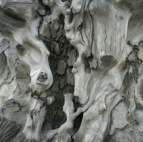 水泥树厂家