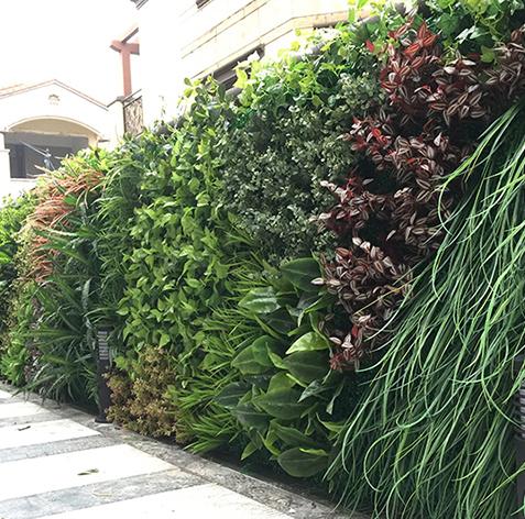 植物墙厂家
