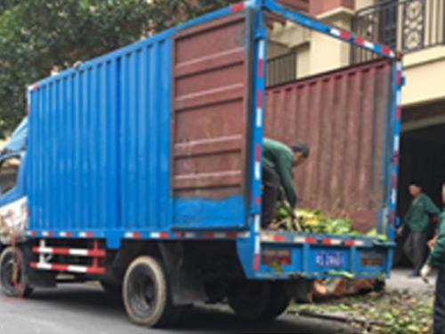 绿化垃圾清运