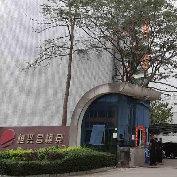 精密模具加工厂 大湾区深圳乐博平台 模具公司定制大型注塑模具