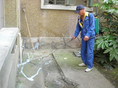 石家莊除蟲公司