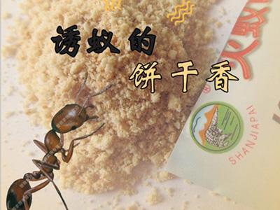 石家莊專業滅螞蟻公司