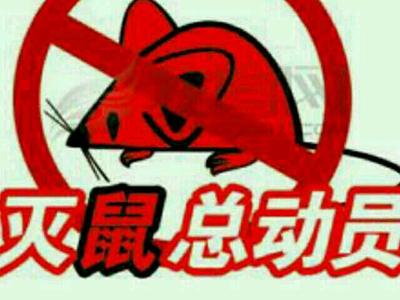 太原灭鼠公司