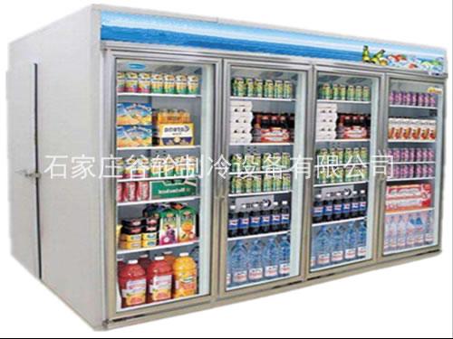 冷饮后补式展示冷库