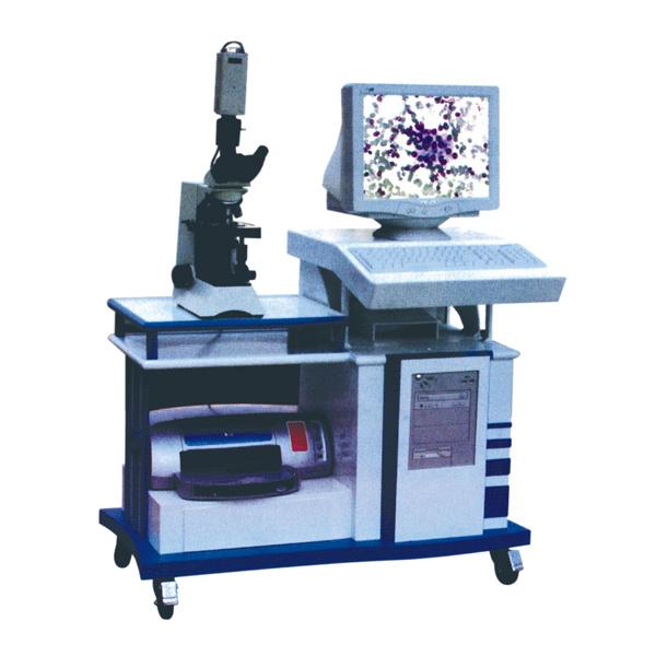 病理图文分析系统