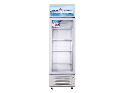 穗凌商用立式冷藏冰柜