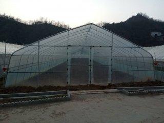 建设温室大棚
