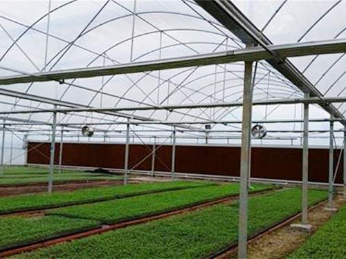 新型温室大棚建设