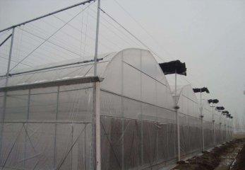 温室连栋大棚建造