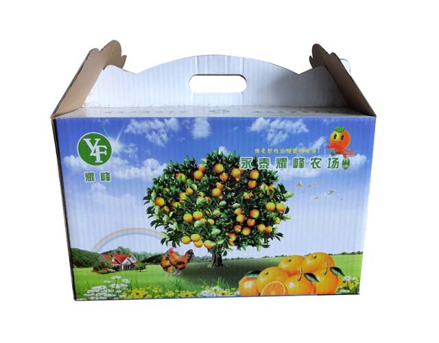 桔子禮盒包裝彩箱