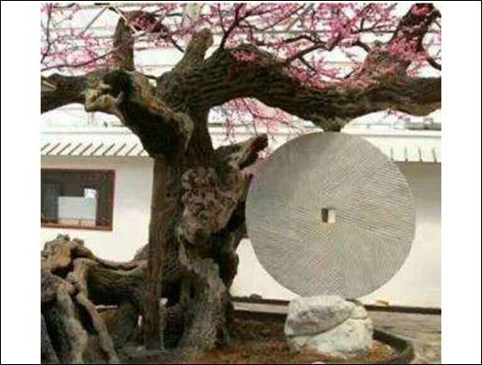 青州仿真树