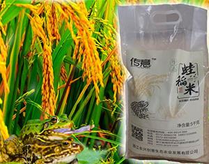 有机大米厂家