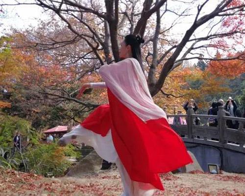 中道禅舞课程