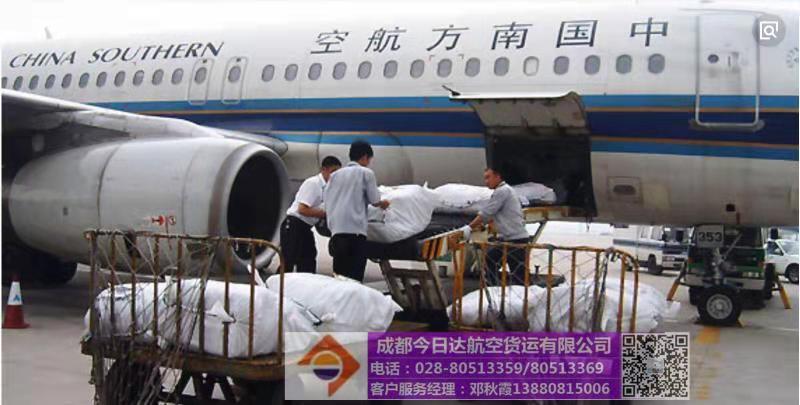 雙流機場熊貓空運
