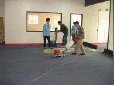 单位地毯清洗