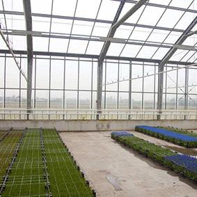 沈阳玻璃温室