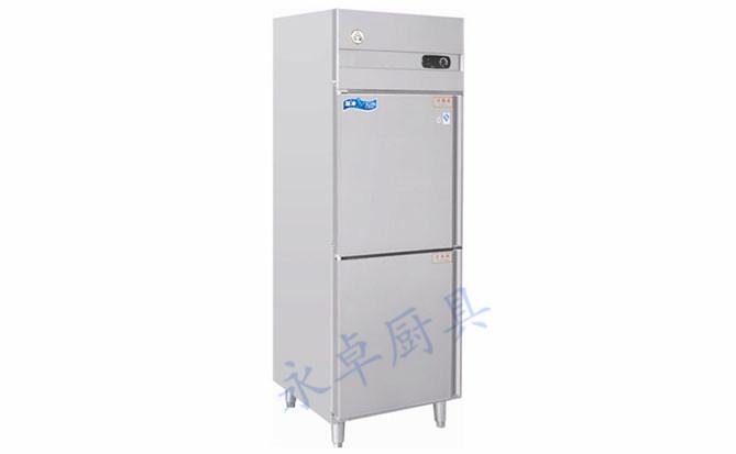 两门冷柜(冰堡)