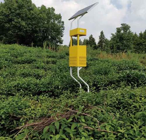 風吸式殺蟲燈