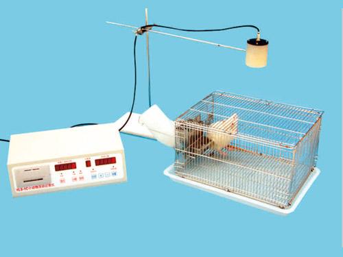 小动物活动记录仪