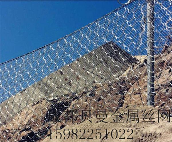 四川邊坡防護網