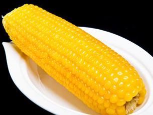 纯东北玉米