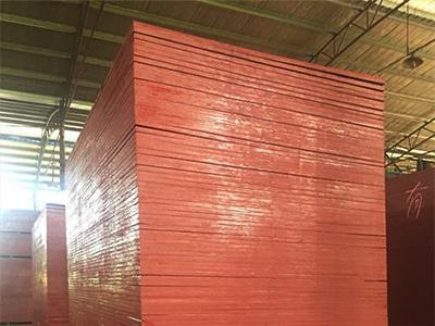 广东松木模板