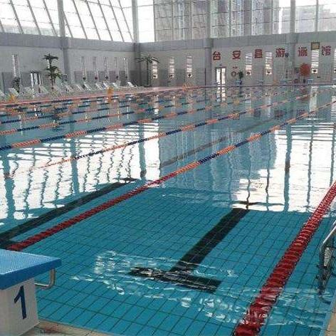 游泳池净化