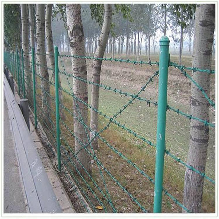 贵州刺绳护栏