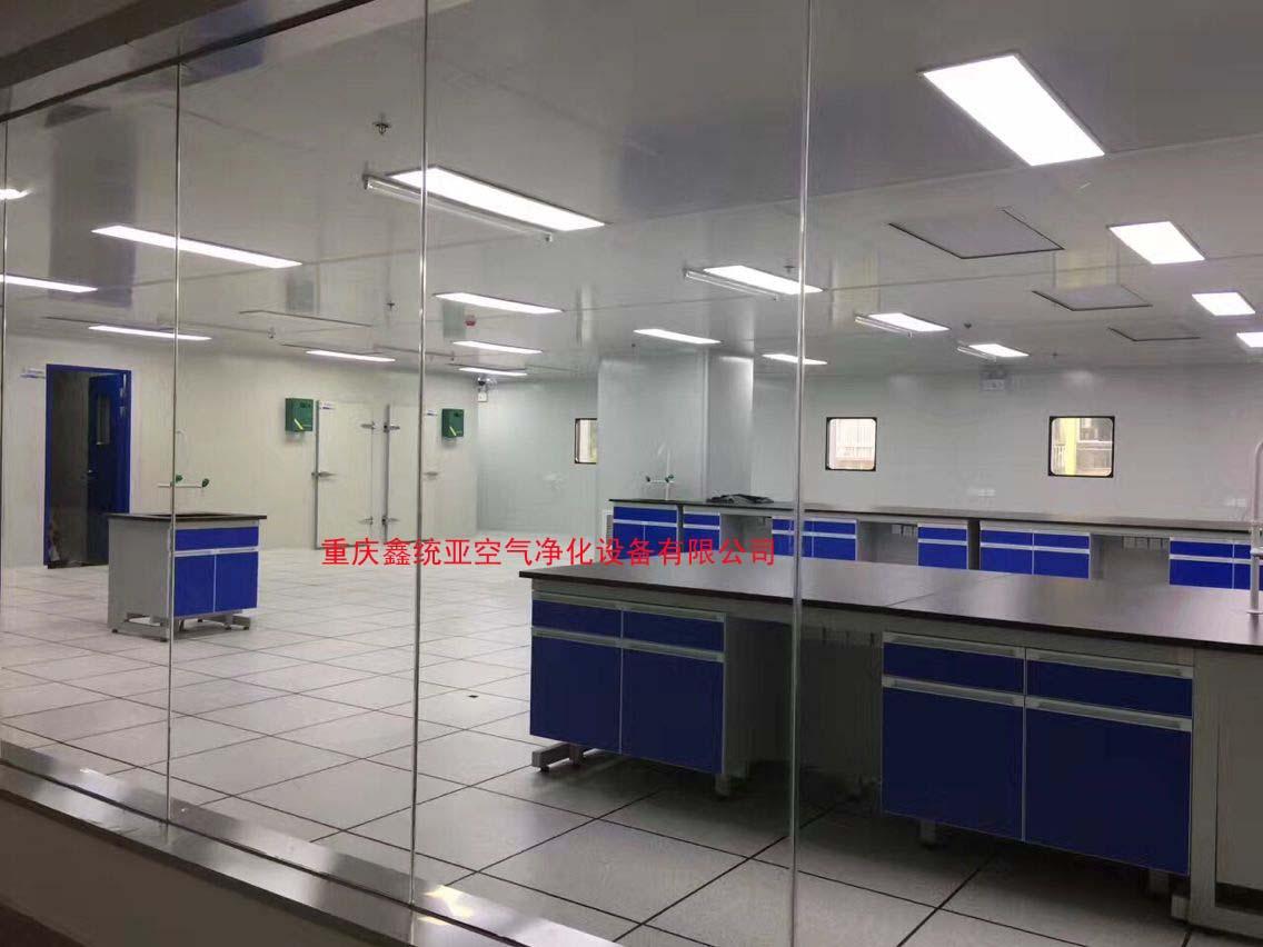重庆迪威纳迪亚检测三期生化检测室