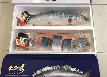三文鱼礼盒