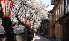 日本护理免学费半工半读可移民