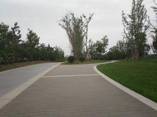 pc道板砖
