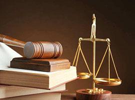 侵权纠纷-法律咨询